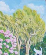 Eucaliptus a Marina di Carrara
