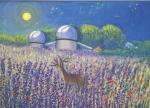 osservatorio-astronomico-di-pian-dei-termini-50x70-acrilico-su-tela